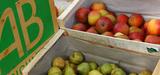 La production et la consommation de produits bio continuent de croître en France