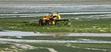 Nitrates et algues vertes : la France à contre-courant ?