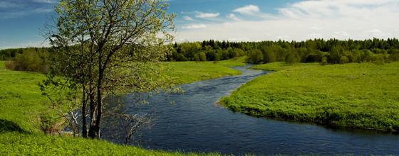 Qualité de l'eau : le WWF France dénonce une surveillance biaisée