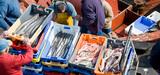 Pêche : la France condamnée à une astreinte de 57 millions d'euros