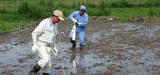 Fukushima : l'accumulation de d�chets contamin�s inqui�te l'AIEA