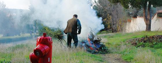 Une circulaire précise l'interdiction de brûlage des déchets verts
