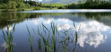 Secteur agricole : une modification de la politique de l'eau s'impose