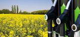 La politique de soutien aux agrocarburants coûte cher aux Français