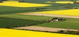 OGM : incohérence au menu de la réglementation française