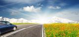 Quelle prise en compte de la biodiversité dans les infrastructures de transport routier ?