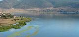 Bassin méditerranéen : perte de moitié de la superficie des zones humides par rapport à 1900