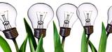 EnR électriques en France : bilan en demi-teinte des filières en 2011