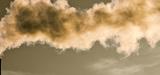 """L'OCDE alerte sur les """"conséquences considérables"""" de l'inaction en matière d'environnement"""