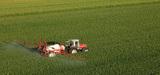 Deux ONG dénoncent des procédures allégées d'autorisation de produits phytosanitaires