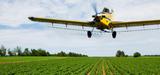 Huit cents épandages aériens de pesticides autorisés cette année