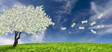 Marché du CO2 : quelles régulations ?