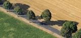 La Commission ouvre le débat sur la coexistence entre les OGM et l'agriculture biologique
