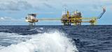 Pétrole en Guyane : l'avancée des travaux de Shell dénoncée par six associations écologistes