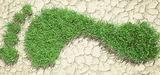 """""""L'Avenir mondial de l'environnement"""" : un changement de cap s'impose"""
