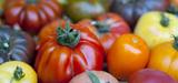 Semences : la CJUE rend une décision défavorable aux vendeurs de variétés anciennes