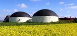 Biogaz : un marché qui s'avère prometteur malgré des projets encore peu rentables