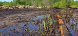 Loi sur la responsabilité environnementale : un guide méthodologique du CGDD