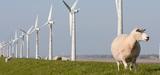 """La filière éolienne """"reprend espoir"""""""