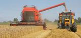 Agriculture : comment réduire la dépendance économique à l'énergie ?