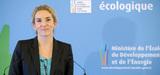 Perturbateurs endocriniens : Delphine Batho détaille la stratégie nationale