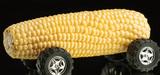 Biomasse : l'arbitrage entre usages concurrents est un choix politique