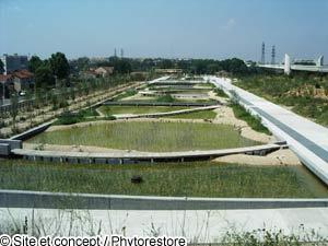 Le nouveau parc du chemin de l 39 ile de nanterre filtre les eaux de la sein - Quartier chemin de l ile nanterre ...