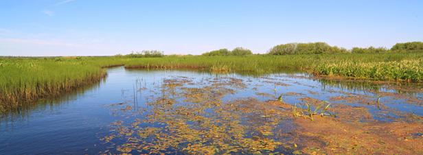 Données sur l'eau : confirmation des défaillances de l'Onema
