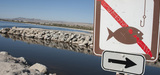 Infractions environnementales : la transaction pénale, une bonne solution ?