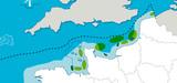 Eolien offshore : FEE propose de substituer une planification maritime aux appels d'offres