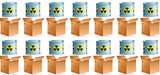 Plan de gestion des déchets radioactifs 2013-2015 : quelles solutions de stockage ?