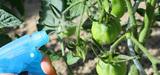 La population française particulièrement exposée aux pesticides selon l'InVS