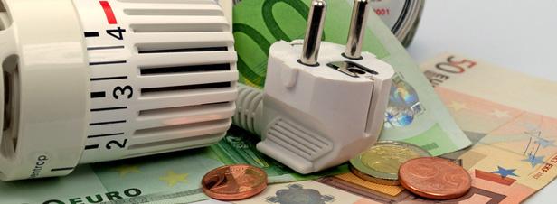 Energies renouvelables : une politique chère et peu efficace