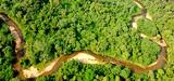 L'Equateur décide d'exploiter le pétrole du parc Yasuní