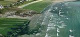 Moins d'algues vertes sur les plages bretonnes cet été