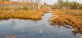 Zones humides : un nouveau plan de protection plus efficace est nécessaire