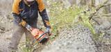 """Un nouveau plan national d'action """"industrie du bois"""" piloté par le Redressement productif"""