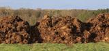 Nitrates : la France finalise sa réforme sous la pression de la justice européenne
