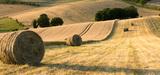 Agriculture : les grandes lignes du projet de loi d'avenir ont été présentées