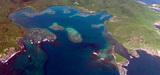 Biodiversité : les 78 sites essentiels pour la survie d'espèces sensibles
