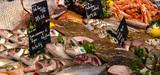 Pêche profonde : un meilleur encadrement des pratiques mais pas d'interdiction en Europe