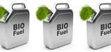 Agrocarburants :  une alliance de circonstance fait capoter le projet d'accord européen