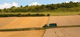 Elevage : les pistes pour réduire les émissions d'ammoniac de 10% en 2030