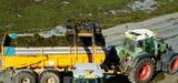 Les algues vertes poursuivent leur prolifération en France