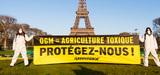 Autorisation du maïs TC 1507 : quels recours pour la France, opposée à cette culture ?