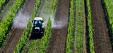 Pesticides : le processus de création des certificats d'économie est lancé
