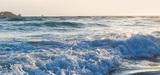 Bon état écologique du milieu marin : Bruxelles tire la sonnette d'alarme