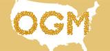 OGM : le ministère de l'Agriculture américain dresse un bilan contrasté après 15 ans de culture