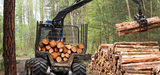 Le projet de mégacentrale biomasse de Gardanne controversé
