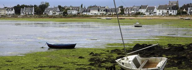 Nitrates : la Bretagne adopte son nouveau programme d'actions